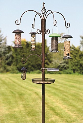 The 3 Best Bird Feeding Stations for your Garden 2018