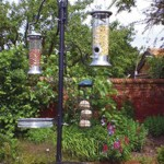 Kingfisher Bird Feeding Station Review 2017